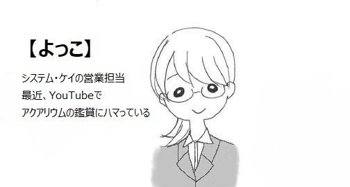 よっこさん(大)